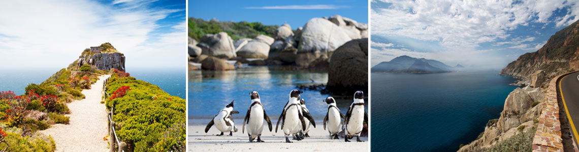 cape town package tour cape point chapmans