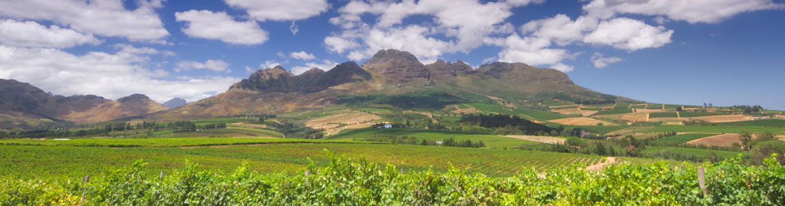 cape town package tour winelands
