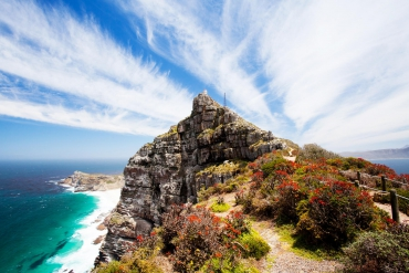 Cape Peninsula Tour | Cape Point full day tour